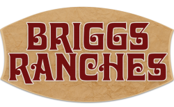 Briggs Ranches | Victoria, Texas